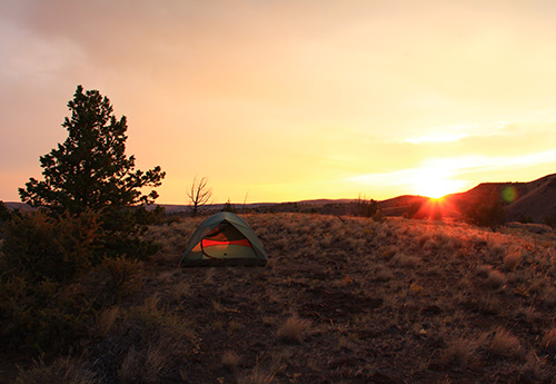 Tent in the desert at sunrise