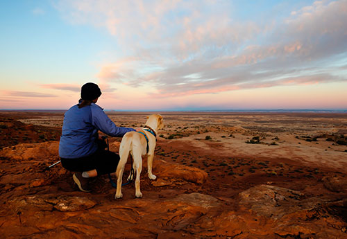 Dog and woman at sunset