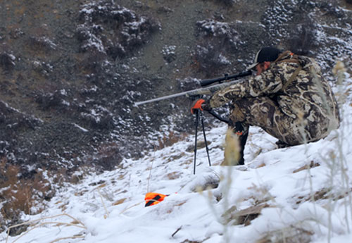 Hunter preparing to shoot a rifle