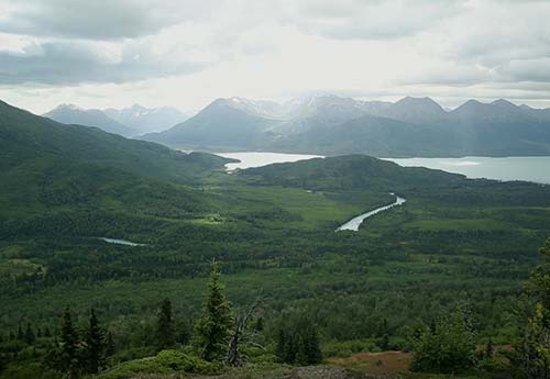 A sweeping vista of Alaskan mountains and coastline in the distance